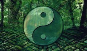 7 Zitate des Tao, um sich weiterzuentwickeln