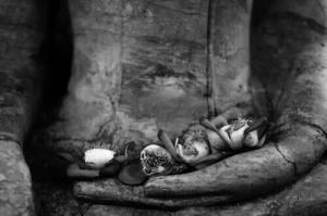 Die vier Aspekte der Liebe im Buddhismus