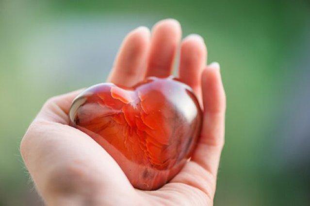 Herz in einer Hand
