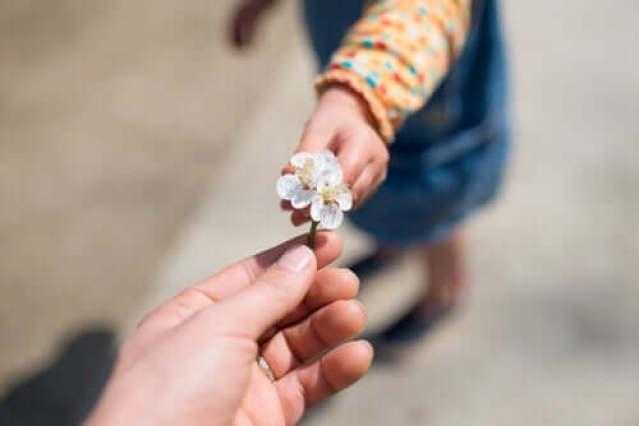 Kleines Mädchen reicht einer anderen Person eine Blume