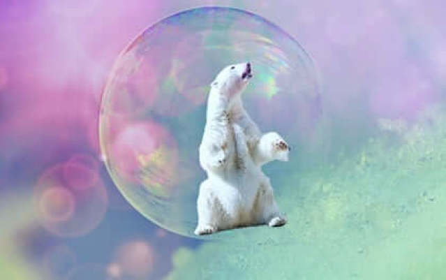 Eisbär in Seifenblase